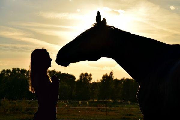 oferta montar a caballo alicante